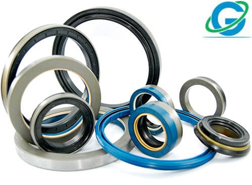 Metric Oil Seals